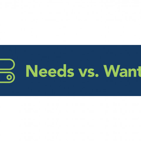 Needs vs Wants