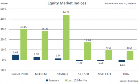 Equities Indices January 2021