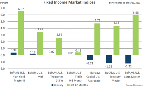 Fixed Income Indices January 2021