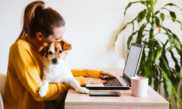 Person working on laptop with a puppy.